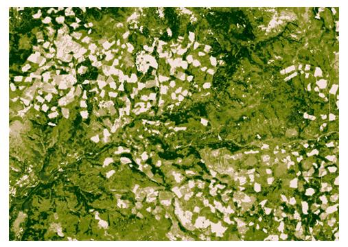 Abb. 3: Detailansicht © NASA